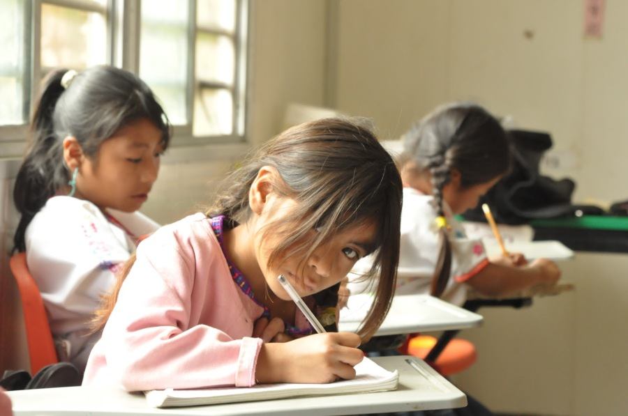 educacion-imagen-1